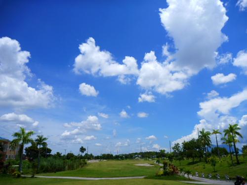 ange golf3.jpg