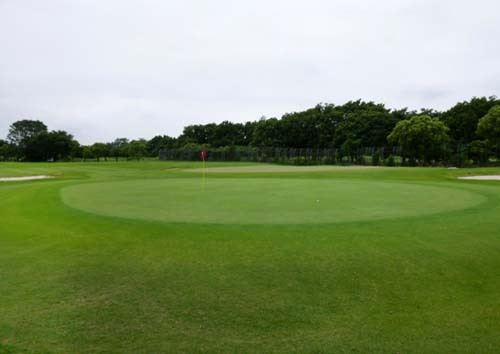 golf ooasou2 nice on.jpg