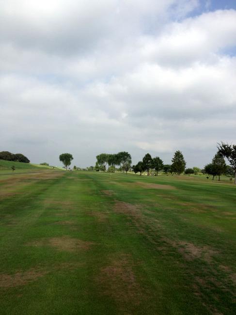 menuma golf.jpg