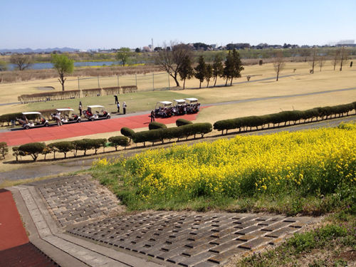menuma golf spring2.jpg