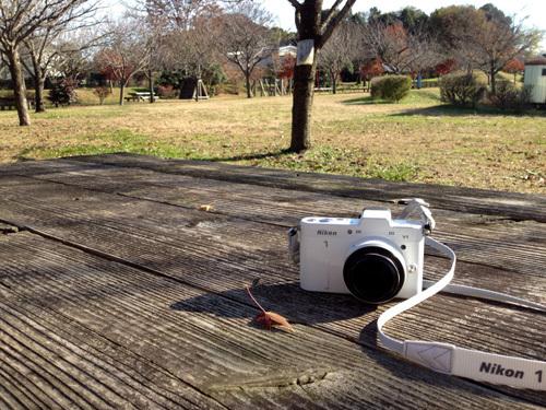 photo sanpo18.jpg
