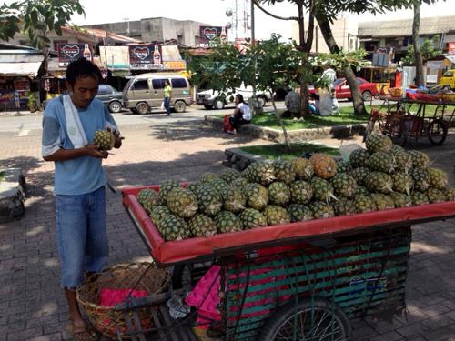 pineapple seller performance.jpg
