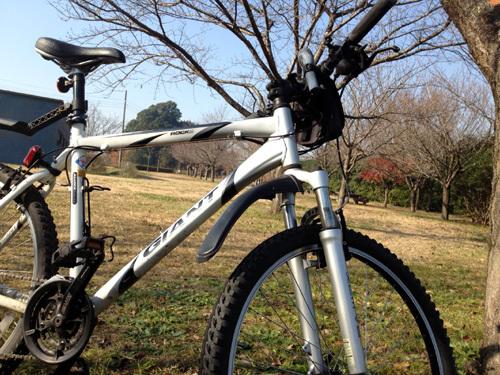 ride bike.jpg