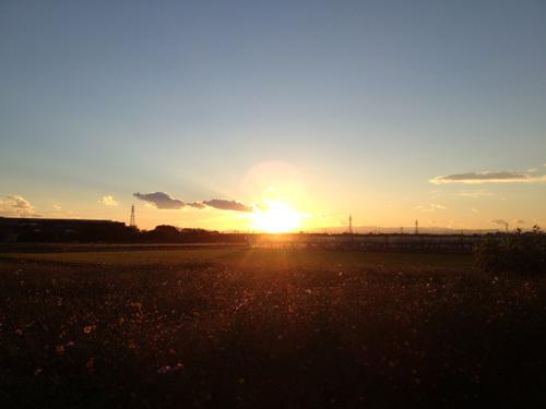sunset in Japan.jpg
