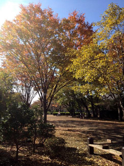 turugashima park.jpg