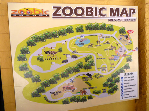 zoobic9.jpg