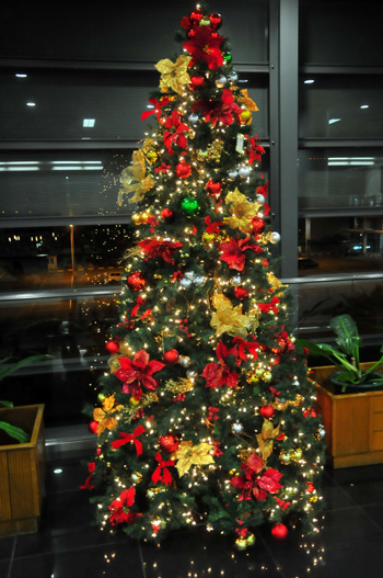 x mas tree in naia1.jpg