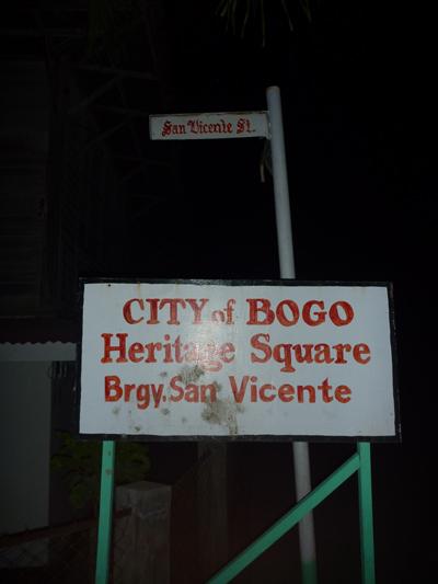 bogo square.jpg