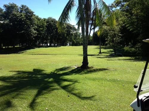 apo 13 coconuts shadow.jpg