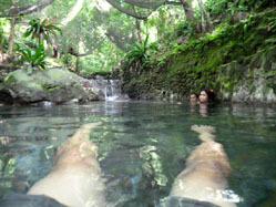 ardent hot spring4.jpg