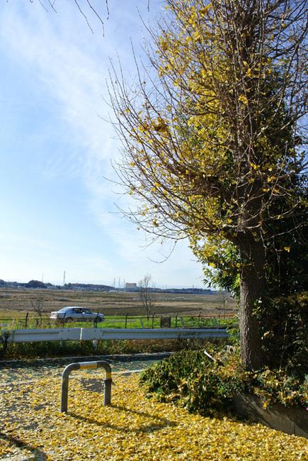 photo sanpo1.jpg