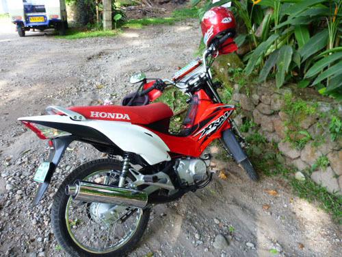 rental bike.jpg